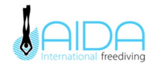 A.I.D.A. International Logo